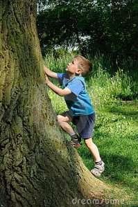 child & Tree