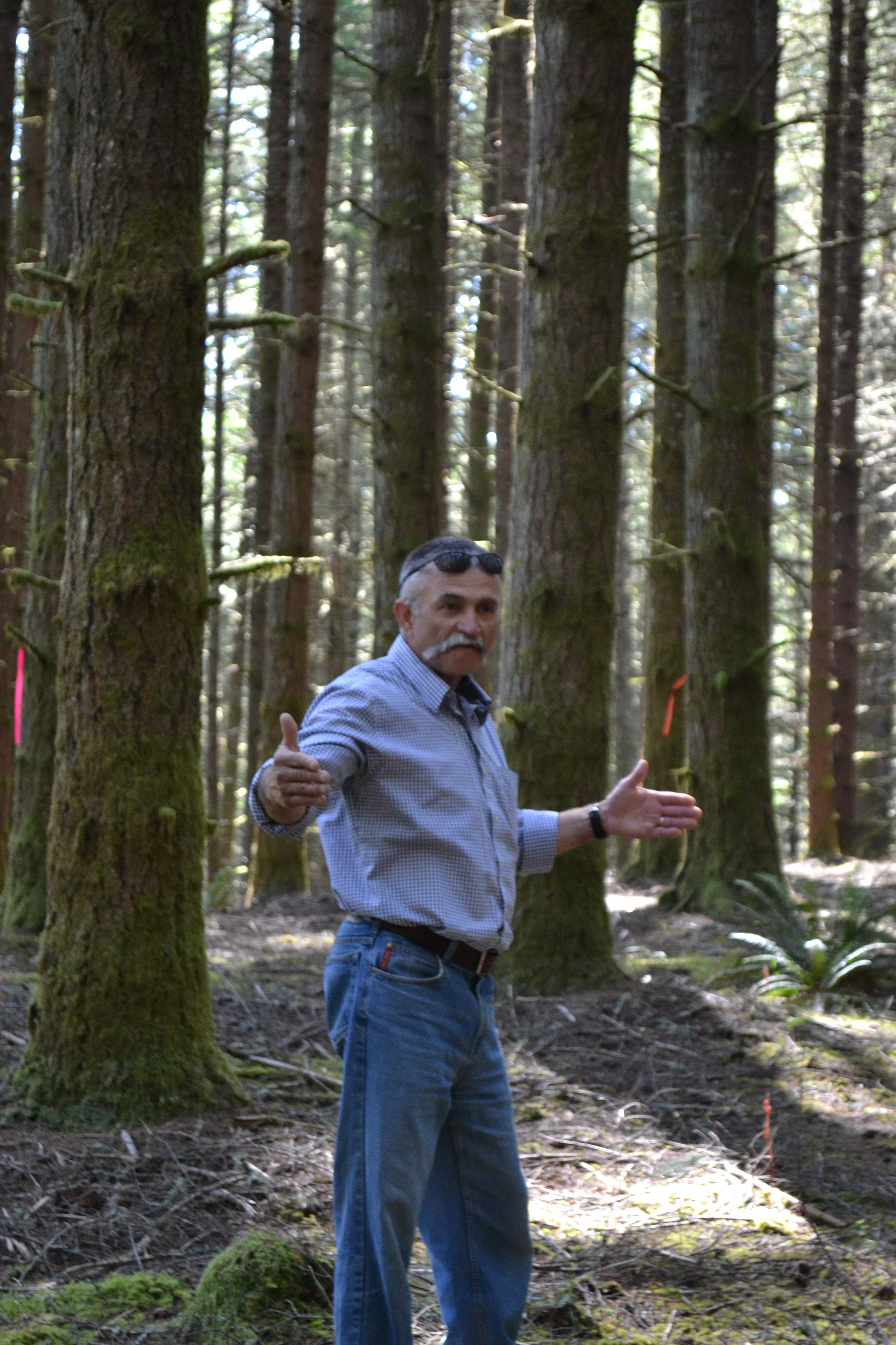 PLC President Duane Evans shows off Live in the Woods Site – The